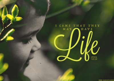 Have LIFE – ProLife – Desktop Wallpaper